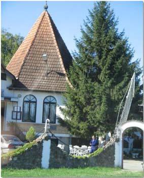 Vila Pipač